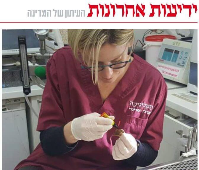 ynet: מדריך וטרינר לשיקום קונכיית חילזון