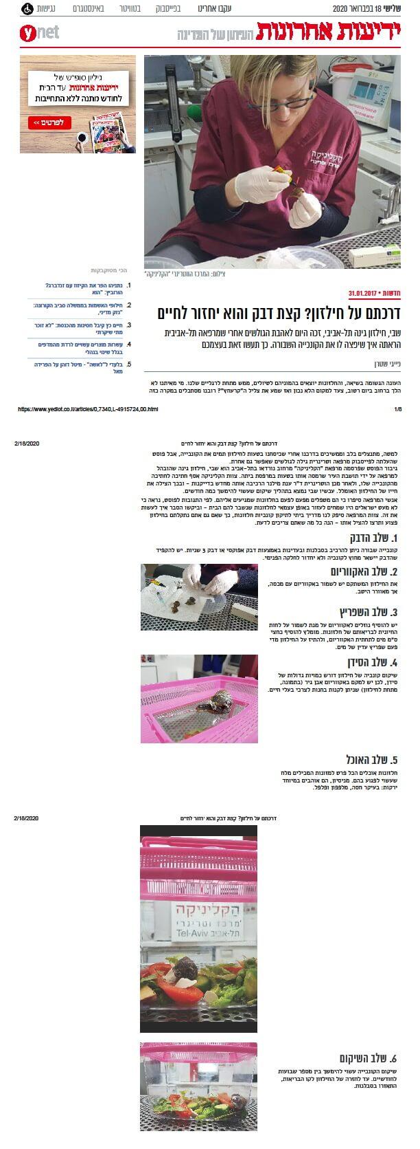 ynet: איך משקמים קונכיה של חילזון